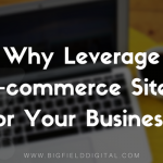 Why Leverage E-commerce Sites For Your Business?